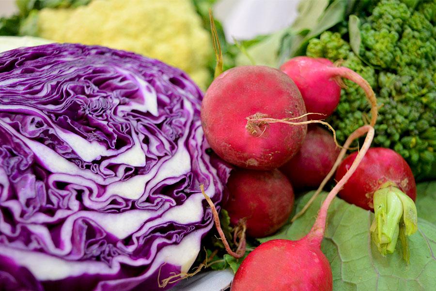 Hortaliças Crucíferas cozidas são ricas em Ferro e Vitamina C