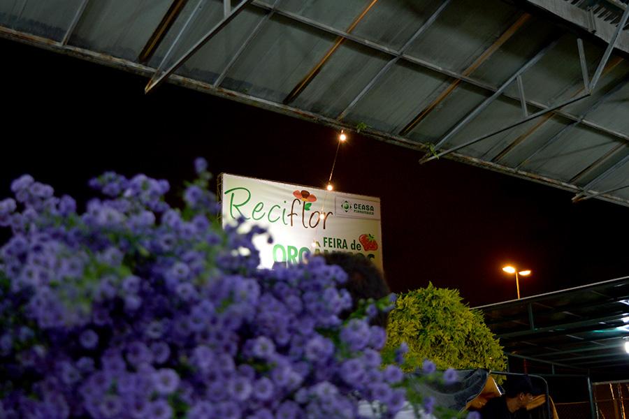 Ceasa comemora recorde de público na Feira de Flores Especial de Finados do Reciflor