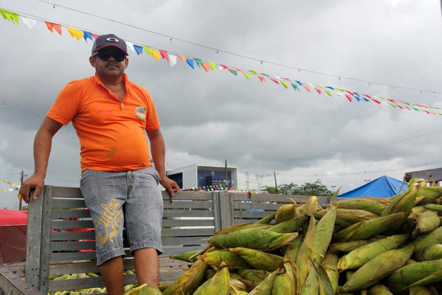Consumidores satisfeitos com a qualidade e preço do milho no Ceasa