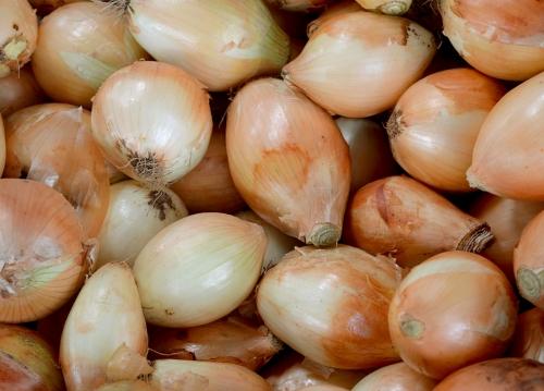 Hortaliças voltam ao preço normal no Ceasa